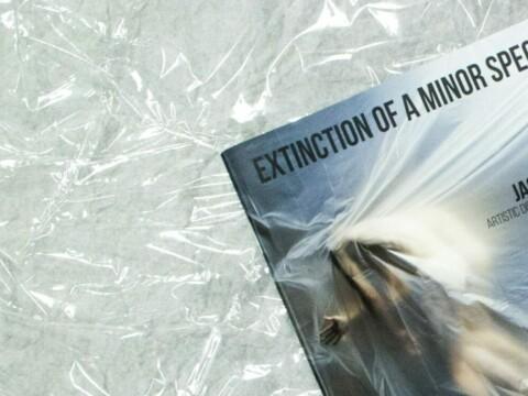 Extinction of a Minor Species
