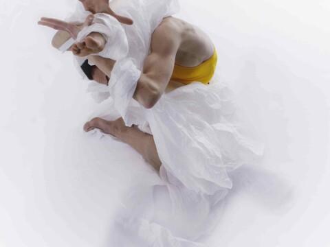 Choreographic Paper / performance